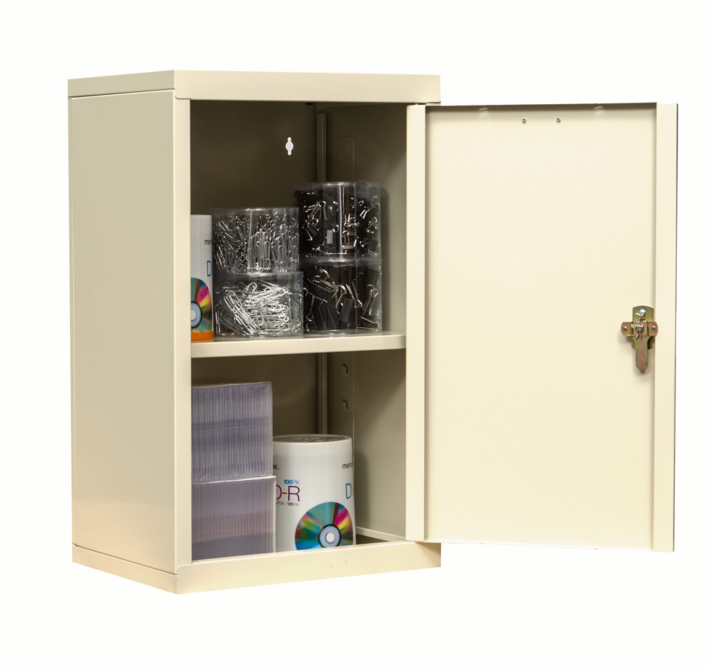 Bon Wall Mount Cabinet With Solid Door