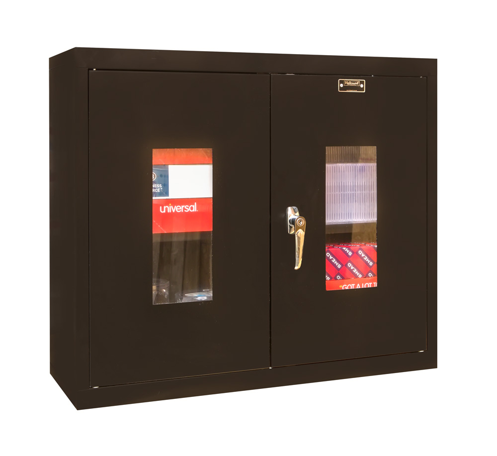 Wall Mount Cabinet With Safety View Doors
